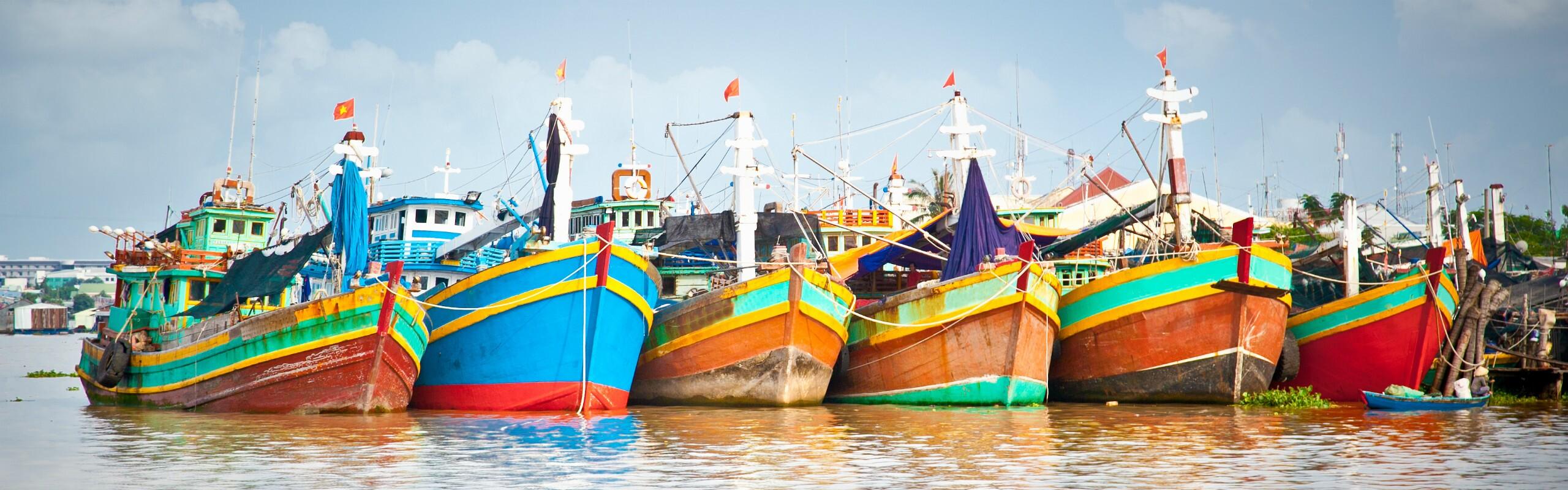 Landscape of Vietnam - Picture Perfect Diversity