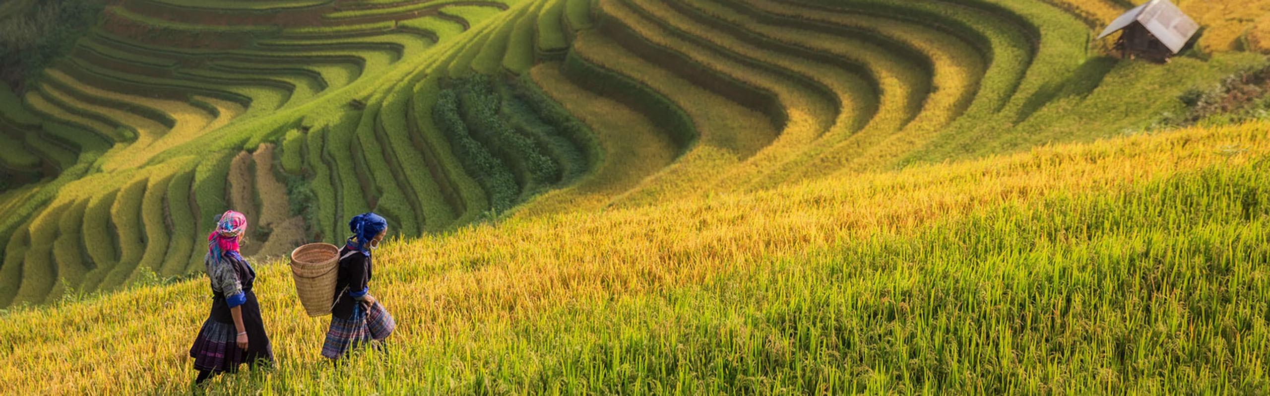 Villages in Vietnam