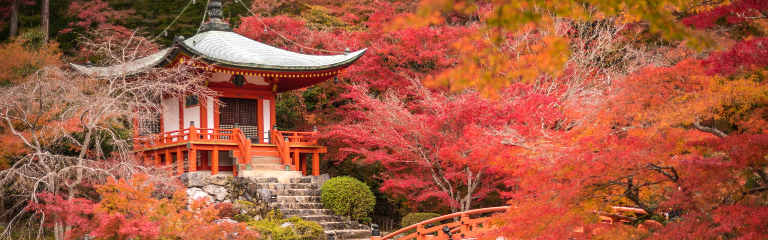 Climate and Weather in Japan - The Ultimate Guide