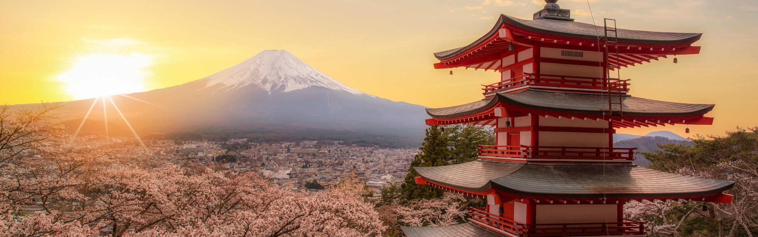 The Best Time of Year to Visit Japan