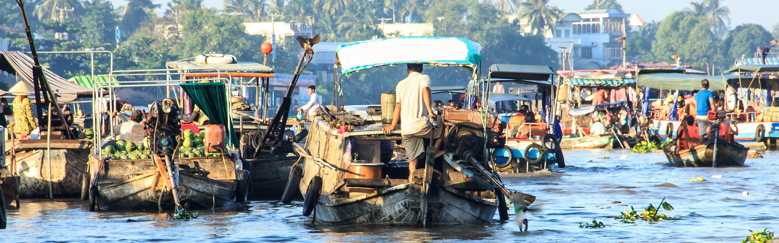 Shopping in the Mekong Delta