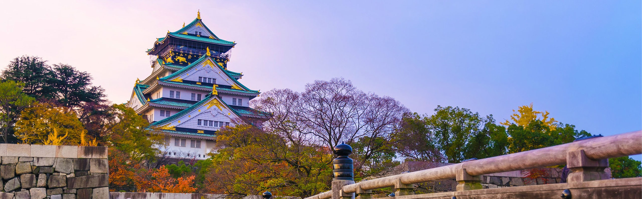 Cherry Blossom in Osaka - When to See and Where