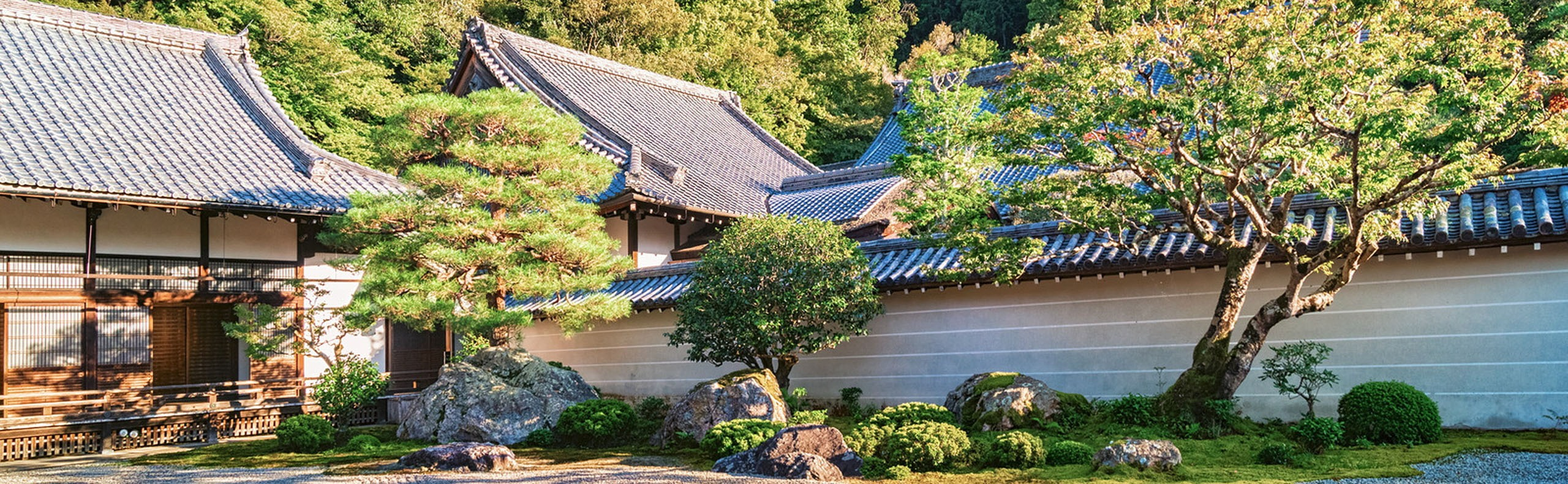 Japanese Gardens -Everything You Need to Know